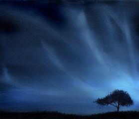 der Nachtbaum