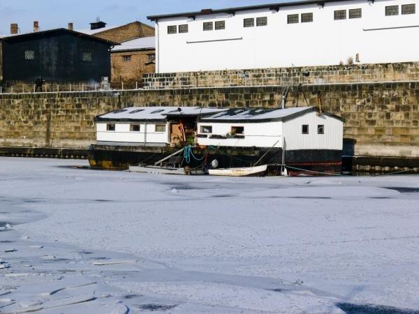 Dieses Stückchen Lappland liegt in Dresden