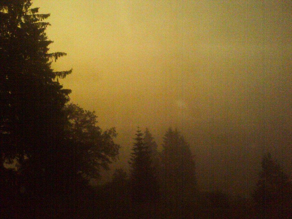 Nebel 2